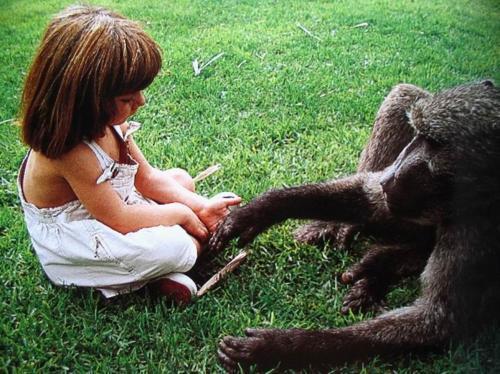 Рассказ о Типпи Дегре, выросшей бок о бок с дикими африканскими животными