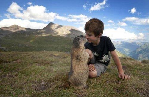 Невероятная дружба 8-летнего Маттео и сурков