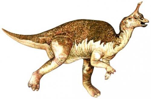 Топ-10: Самые нелепо выглядящие динозавры