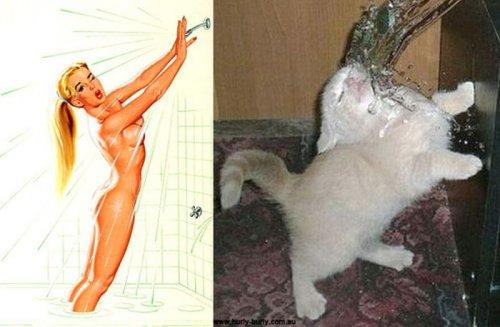 Кошки в образе пинап-девушек (37 фото)