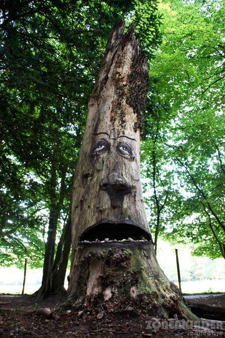 Многоликие деревья в проекте The Tree Project (16 фото)