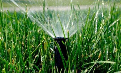 Включенная поливалка при минусовой температуре (4 фото)