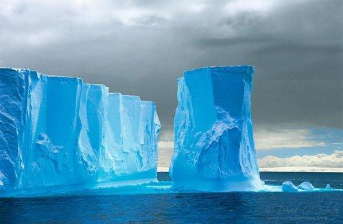 Природа Аляски, Арктики и Антарктики через объектив Дэвида Шульца (13 фото)