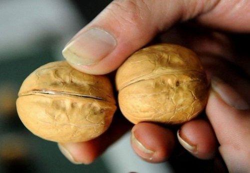 Как хитрые китайцы зарабатывают на продаже грецких орехов (5 фото)