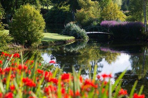 Восхитительный сад Maple Glen в Новой Зеландии