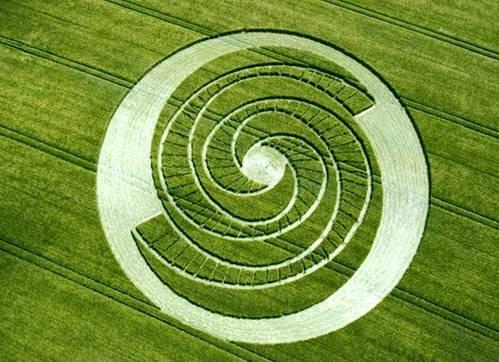 Рисунки на полях как новый вид современного искусства (25 фото)