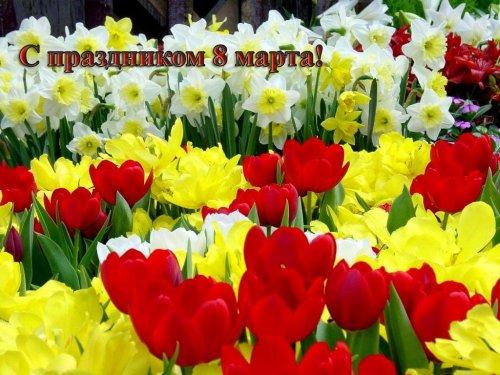 Поздравительные открытки с 8 Марта (26 шт)