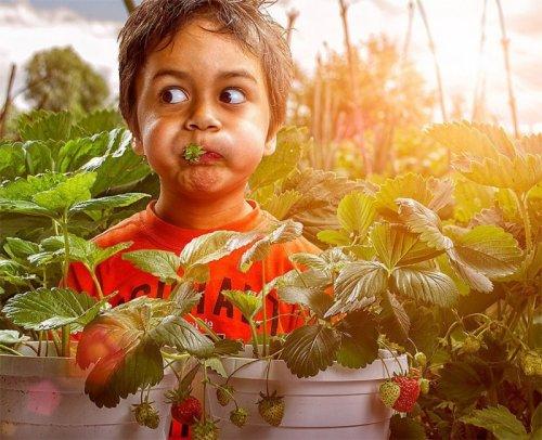 Моменты детства в фотографиях Эдриана Соммелинга (17 фото)
