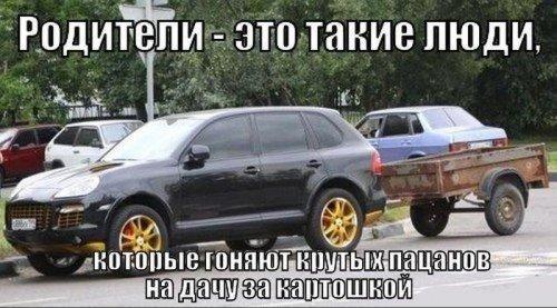 Автомир в прикольных картинках (30 шт)
