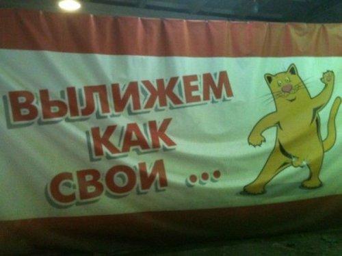 Смешные надписи и реклама (21 шт)