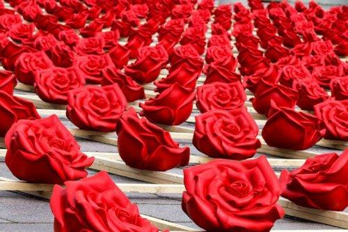 Подарок городу в виде тысячи алых роз (5 фото)