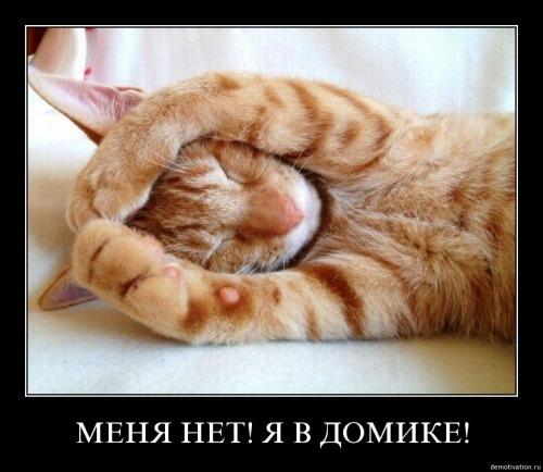 Немного демотиваторов в мрачный понедельник :)