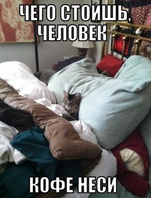 http://www.bugaga.ru/uploads/posts/2013-04/thumbs/1364891901_foto-prikoly-42.jpg