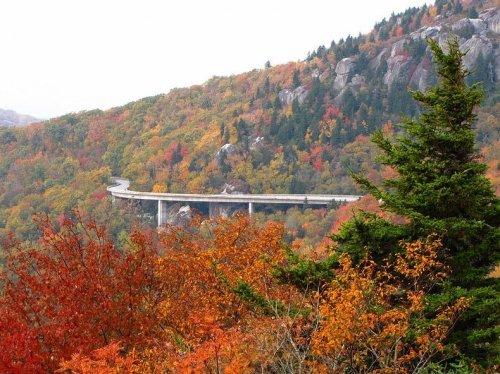 Виадук Линн Ков: самый экологически чистый мост