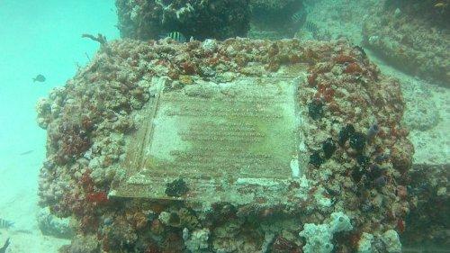 Мемориальный Риф Нептуна: Подводное кладбище