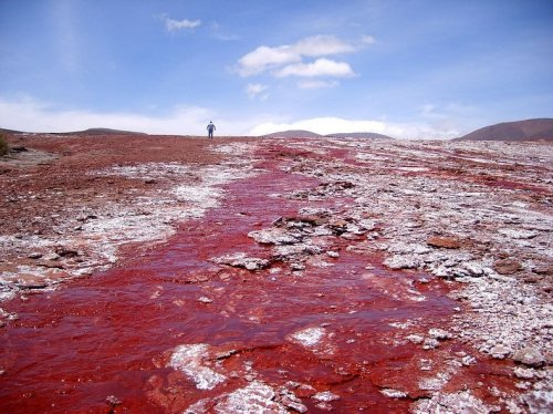 Таинственная Красная лагуна в Чили
