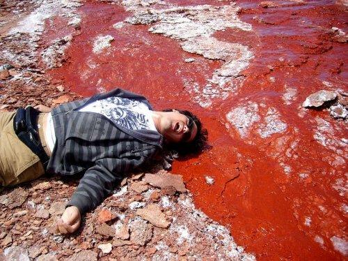 Таинственная Красная лагуна в Чили (9 фото)