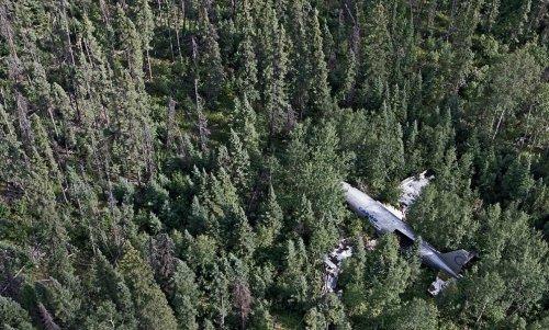 Крушения самолётов с хэппи-эндом (14 фото)