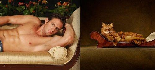 Мужчины и котята (21 фото)