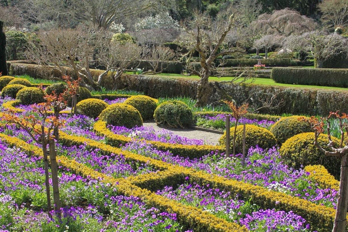 картинки про саду простой, очень