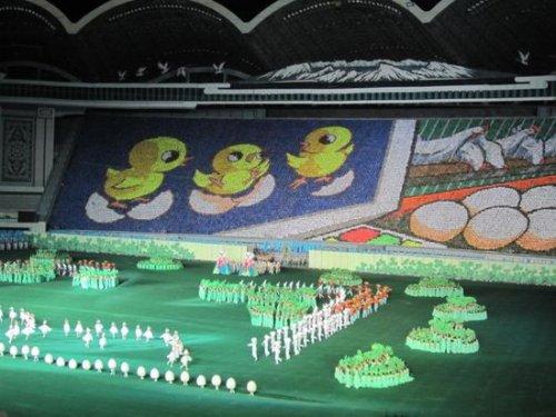 Изумительные человеческие мозаики на массовых играх Ариран в Северной Корее