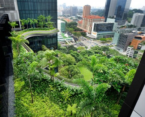 Отель ParkRoyal в Сингапуре – зелёный оазис мегаполиса (21 фото)