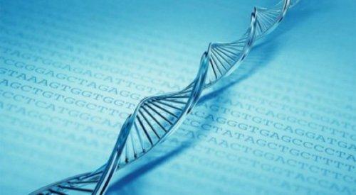 10 Поразительных фактов о ДНК