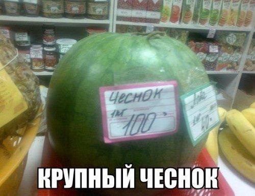 Анекдоты, смешно