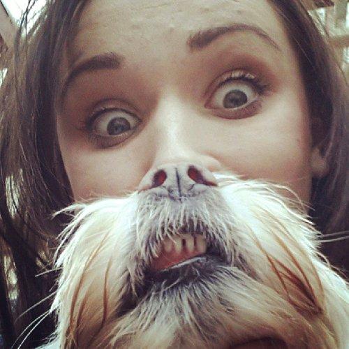 Собакоборода – продолжение фото-мема Котоборода (10 фото)