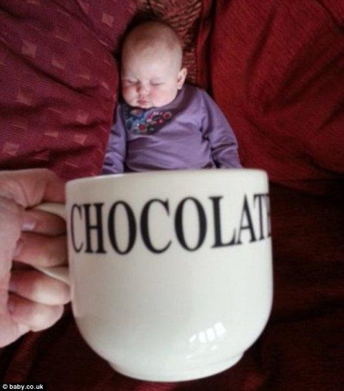 Новый фото-мем – младенцы в чашках (17 фото)