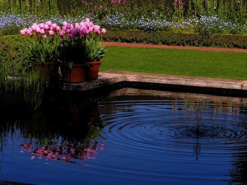 Цветущие сады Филоли (25 фото)