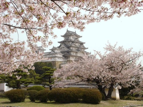Замок Мацумото – самый красивый в Японии замок на воде (10 фото)