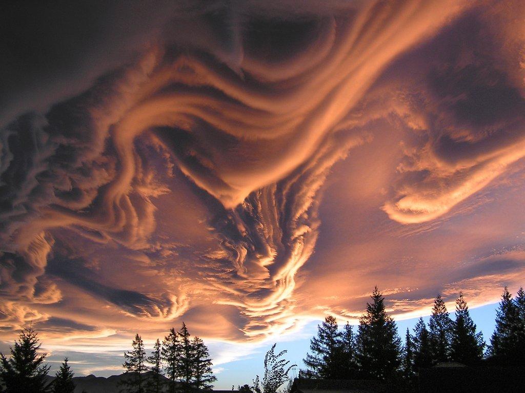 Undulatus asperatus и Mammatus - два вида необычных облаков (15 фото) .