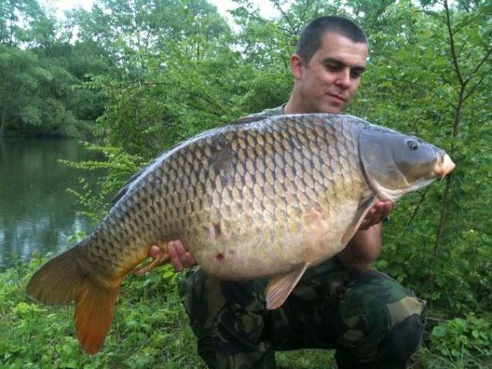 рыбак поймал большую рыбу