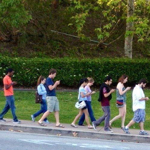Фотографии, свидетельствующие о том, что с обществом что-то не так (21 фото)