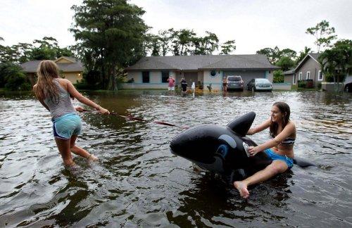 Положительная сторона наводнений (13 фото)