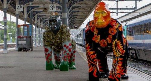 Парад горилл на улицах Нориджа (25 фото)