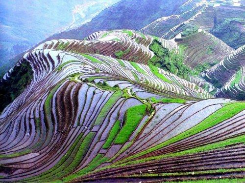 Рисовые террасы Honghe Hani внесены в список объектов Всемирного наследия ЮНЕСКО (9 фото)