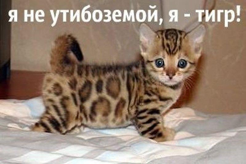 http://www.bugaga.ru/uploads/posts/2013-07/1374699615_zachet-13.jpg