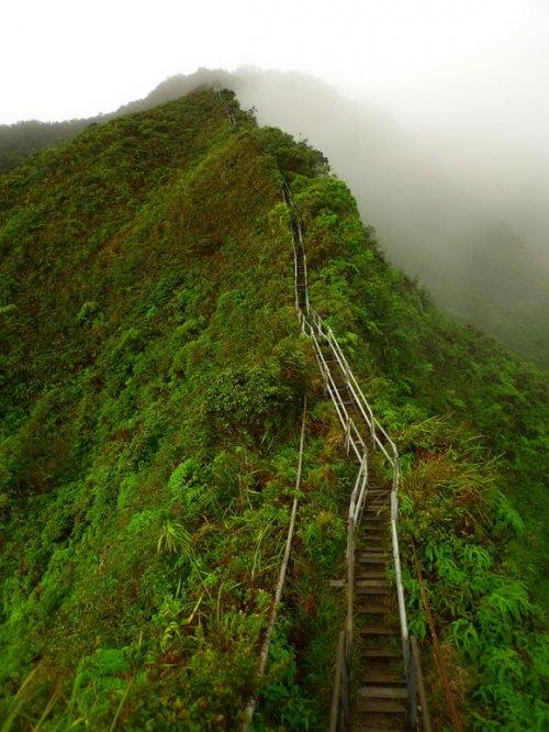 12 Удивительных лестниц со всего мира