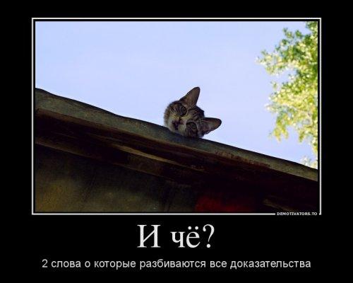 Сборник прикольных демотиваторов (17 фото)