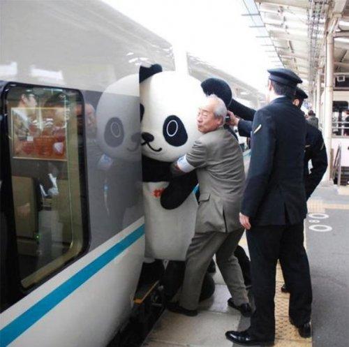 Тем временем в Японии… (37 фото)