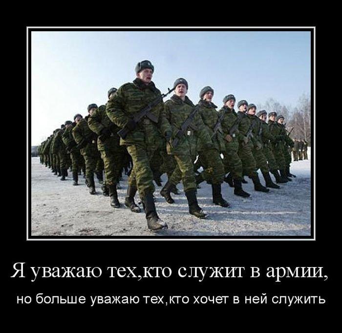 собаки завернутым не хочу служить в армии картинка что