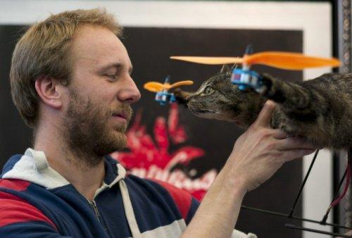 Новый летательный аппарат, созданный голландцем Бартом Янсеном