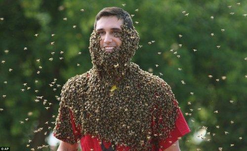 Самый экстремальный конкурс бородачей (5 фото)