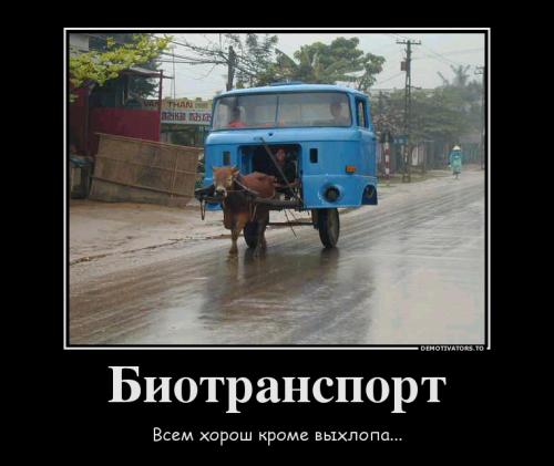 Сборник новых демотиваторов-приколов (19 шт)