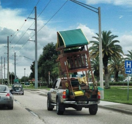 Короли транспортировки (29 фото)