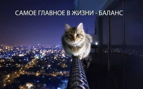 Пятница - день фото приколов на бугага.ру (69 шт)