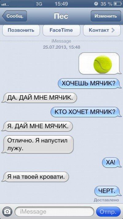 SMS-переписка с собакой (47 фото)