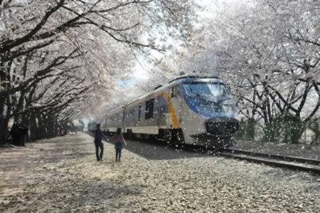 9 Самых удивительных железнодорожных путей